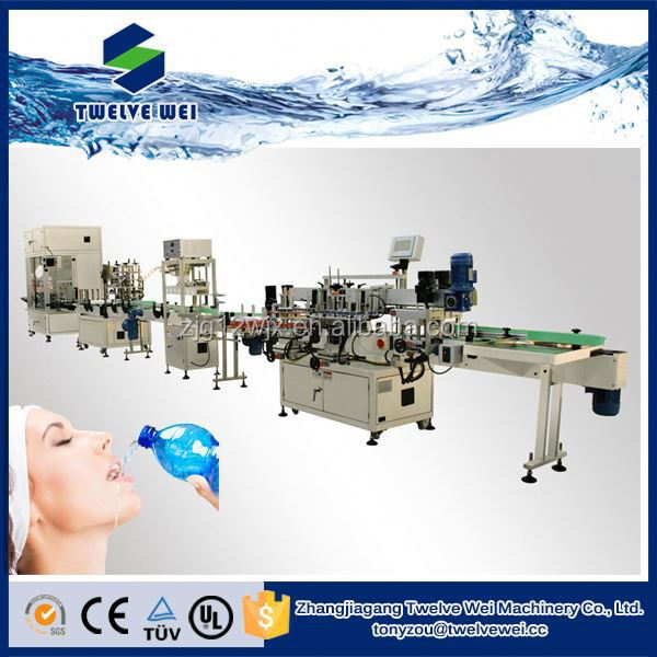 Tun-key Project Automatic Mineral Water Plant Machinery/Water Filling Line