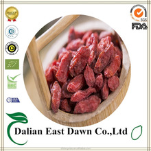 goji berries dried fruits names of all dried fruits