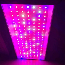 Custom YN300w DIY 350w Led Plant Grow Light Manufacturer