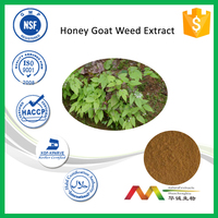 NSF-cGMP Health Care Sex Exhancement Icariin Honey Goat Weed Extract