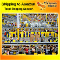 zim shipping lines to USA Amazon