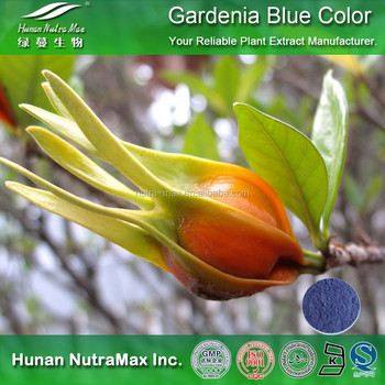 100% Natural Food Coloring Gardenia Blue Color Pigment Powder