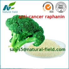 hot sell extract of broccoli seed extract / Brassica oleracea L.