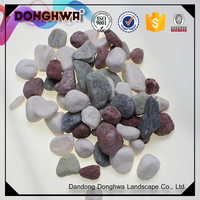 Good quality China natural multiple color gravel pebble stone