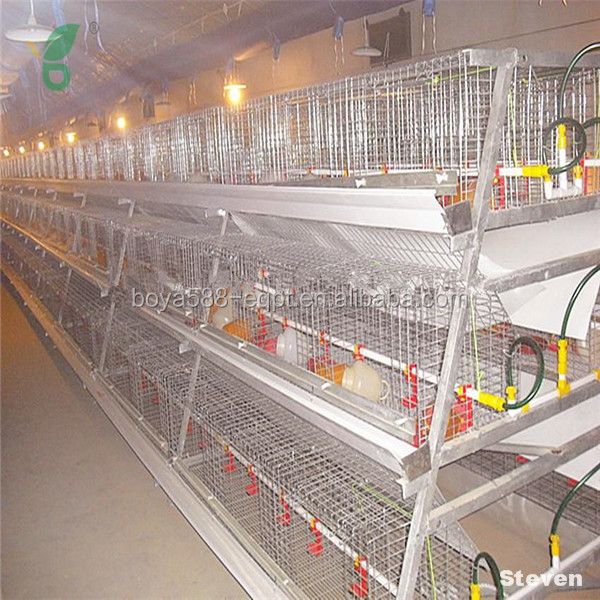 Best price chicken layer broiler poultry shed cage design