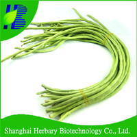 High quality CL NO.1 green long bean seeds for growing