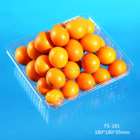 eco-friendly high quality square PET clear plastic packing tray for fruit/cookie/cake