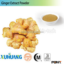 iso 9001organic ginger powder,yellow ginger powder,specification ginger powder