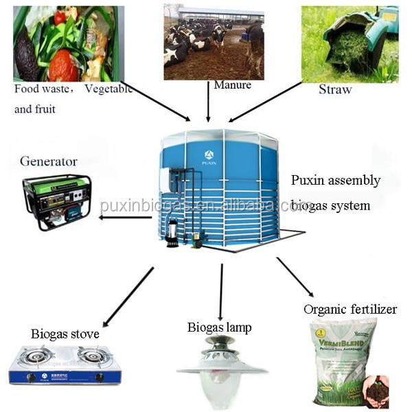 High biogas production for cow dung tretament of biogas power plant