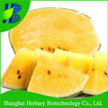 2017 Latest yellow flesh watermelon seed for planting