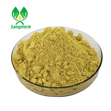 100% pure natural high quality ginkgo biloba leaf extract powder