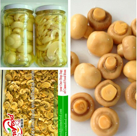 canned mushrooms supplier pns mixed mushrooms pns pure mushrooms