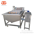 Malaysia High Efficiency Industrial Dates Washing Ozone Citrus Fruit Vegetable Washer And Cleaner Machine