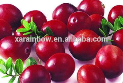 ISO9001 factory supply blushwood berry extract anti cancer forever living products photo