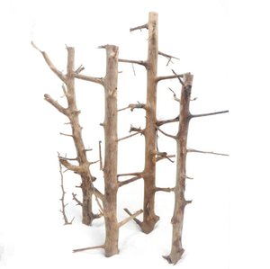 Professional Long Hands Wood Natural Driftwood Art