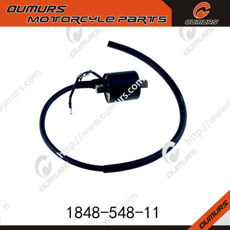 for 250CC QINGQI PIONEER XF250 motorcycle ignitioncoil