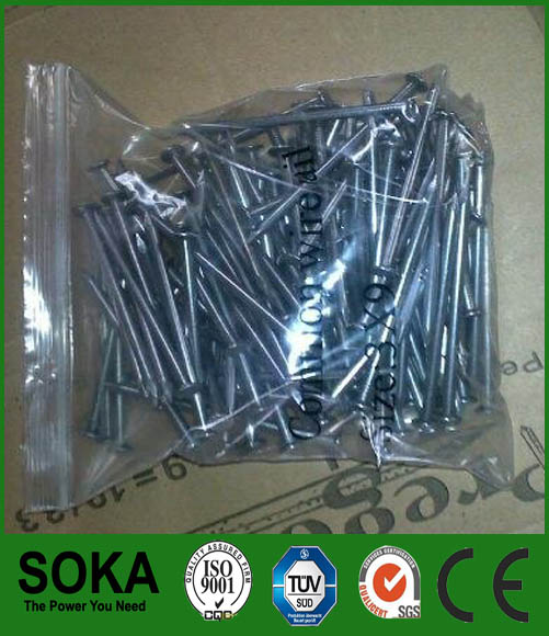 common iron round nail with good quality