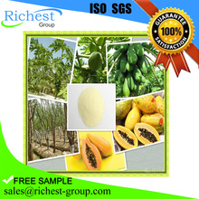 factory offer papaya fruit extract,papaya leaf extract powder