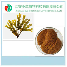 30 years experience factory Supply Fucoidan 85%,seaweed extract powder,seaweed extract natural plant growth promoter