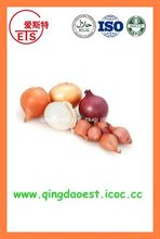 FOR SALE export Fresh Red and Yellow Onion