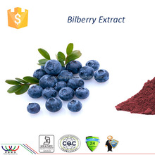Kosher HACCP FDA cGMP certified 10%-25% Anthocyanoside cyanidin antioxidant treat diabetes product bilberry extract