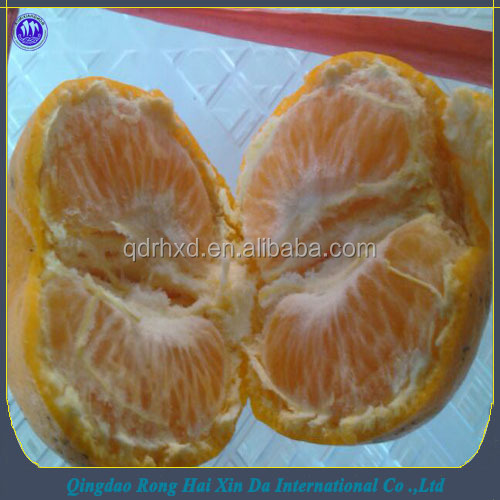 Chinese lokammandarin orange kino mandarin orange