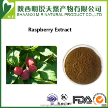 High quality Red raspberry extract 10:1 Raspberry fruit extract powder Fructus Rubi Extract