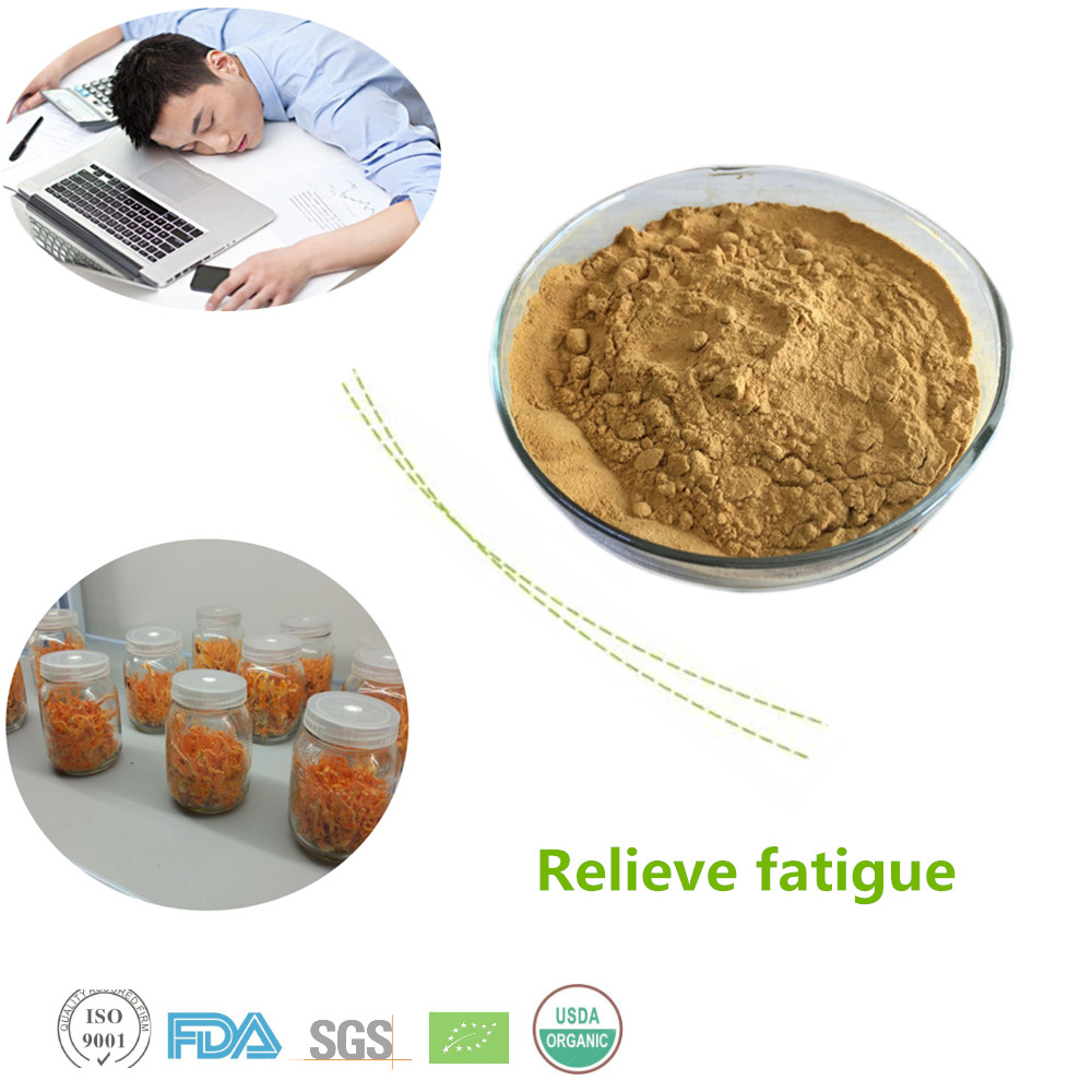 Pure natural Polysaccharides 50% cordyceps mycelium extract