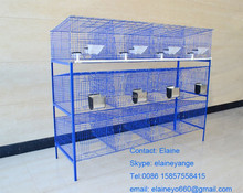 tweleve galvanized metal poultry layer rabbit cage