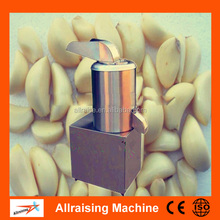 Stainless Steel Grinding Machine For Ginger Paste