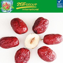 Chinese Red Jujube Dried Red Dates Dired Fruit Fresh Dates