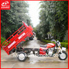 Made In China Beautiful Outlook Quality 3 Wheeler Petrol Engine Motor Tricycle For Sales