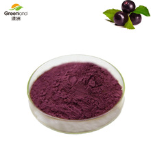 Greenland 100% Natural Acai berry extract Anthocyanidin 5% Fruit Powder