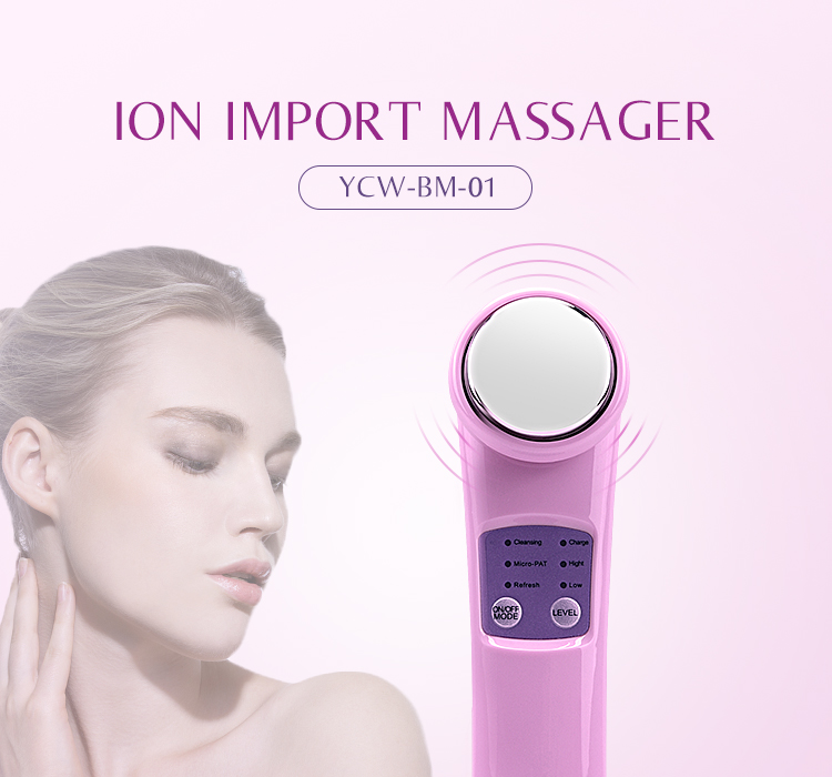 Home Use Beauty Skin Rejuvenation and Facial Massage Product