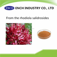 TOP Quality Rhodiola Rosea