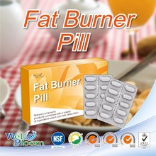 Herbal Extract Belly Fat burner OEM Weight Loss Pill