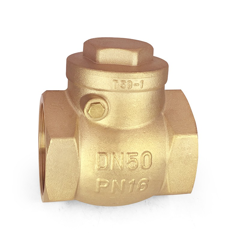 "VALOGIN 2"" Inch Top Profession Brass Check Valve price list"