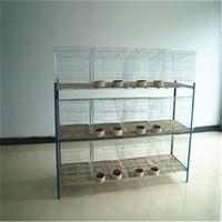 Reasonable price best quality meat rabbit cage in kenya farm