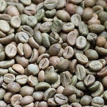 Wholesale Cheap China Factory Price Green Robusta Washed Coffee Bean