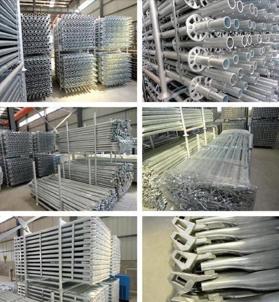 Ringlock scaffolding standard-4.png