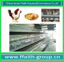 2012 high quality chicken poultry farm equipment for sale