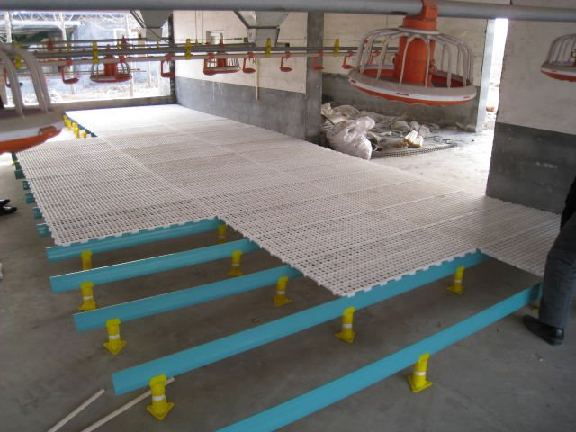 HOT! Plastic floor for poultry house