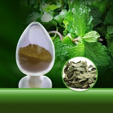 Wild Mint Leaf Extract