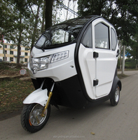 BRI-S00 2015 chinese closed electric delivery tricycle for elderly / electric tricycle manufacturer in china