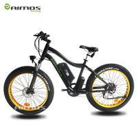 2013 New year promotion Off Road Electric Bicycle Ebike with 36V 6AH Li-ion battery