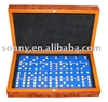 Double Six Domino Game Set with Bright Dot