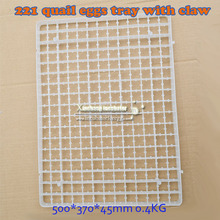 New Design Plastic chicken quail Egg Tray Colorful Egg Trays for sale