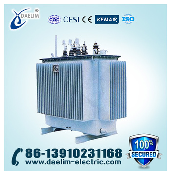 11kv 750kva Low Voltage Electrical Power Transformer with Iron Core