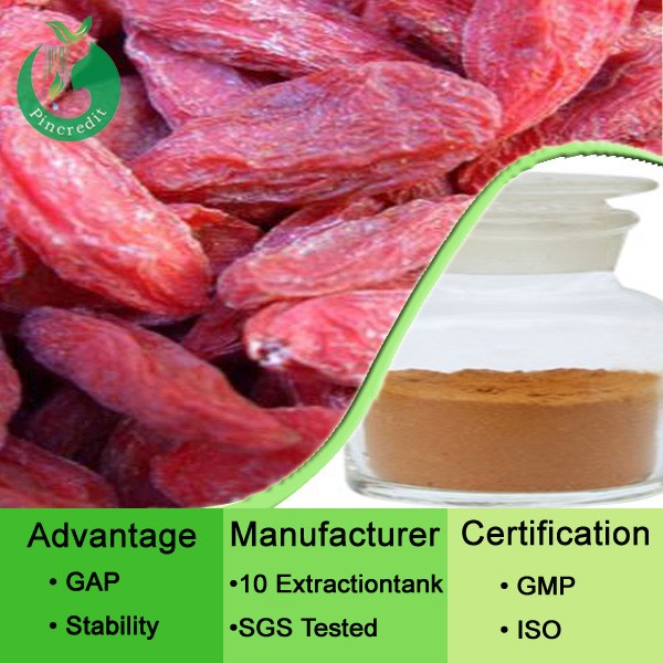 Health care Goji extract/organic goji berry powder