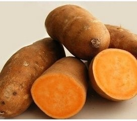 china xi chong The organic food High vitamin yellow heart sweet potato